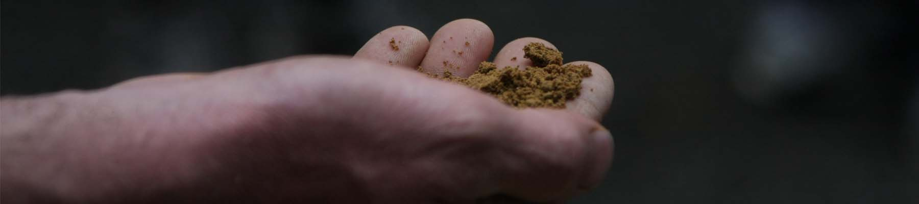 hand with dirt